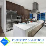 Module de cuisine gris de meubles de compartiment de fini de placage (ZY 1194)