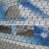Горяч-Окунутое гальванизированное шестиугольное плетение падения утеса