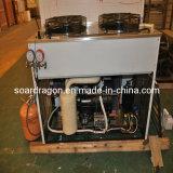 -35 ° C modèle de congélateur à explosion en acier inoxydable (BF-2)