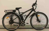 500W 모터를 가진 전기 자전거