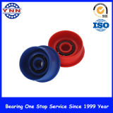 The Best Price를 가진 깊은 Groove Ball Bearing Plastic Coated Bearing