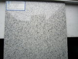 Steen/de tegel van Granite/van Marble Flooring (jl-G05)