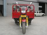 جديدة 3 عربة ذو عجلات سيارة [ريكشو]