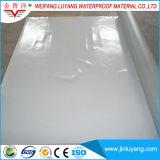 Membrana Waterproofing do PVC da única dobra para a piscina