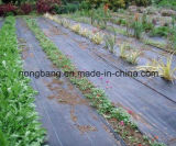 잔디를 위한 PP 위드 매트는 통제를 증가한다