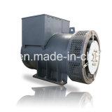 schwanzlose Generatoren 8kVA-4000kVA für Verkäufe