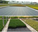 Cubierta de tierra plástica negra combinada polivinílica agrícola de Weed
