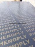 Contreplaqué filmé / Contreplaqué en éucalyptus / Concrete Contreplaqué / Contreplaqué antidémarrage
