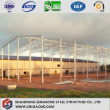Taller ligero de la estructura de acero con diseño y experiencia profesionales