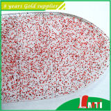 Glitter variopinto Powder per Plastic Making