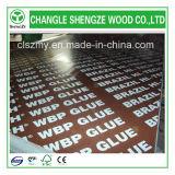 12mm/15mm/18mm imprimiu a madeira compensada enfrentada película do logotipo