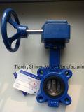 Form/duktiler Eisen-Öse-Typ Drosselventil mit Turbine-Gang