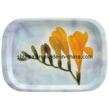 Servicio de mesa-Bandeja 100%/belleza de la melamina con la bandeja de la decoración de la flor (ZZ9001)