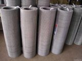 Alta qualità Crimped Wire Mesh in Competitive Price