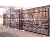 鋳鉄の柵、庭の塀、鉄のゲート(GS-CRF-005)