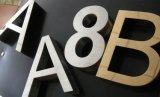 Placcare la pittura del piano/di alluminio taglio/lettere spazzolate del metallo