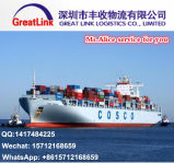 Transporte do oceano de FCL/LCL de Shenzhen/Shanghai de China a Jebel Ali