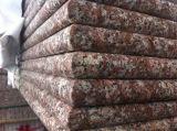 Mais barato pêssego vermelho G687 Stone Tile Granite