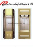스테인리스를 가진 유리제 차 벽 파노라마 엘리베이터