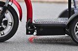 シートが付いている12のインチ500With800W 3の車輪の電気スクーター