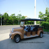 Omnibuses eléctricos de poca velocidad de los pasajeros (RSG-108LA)