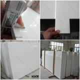 plakken van het Kwarts van de Steen van 2cm de Hoge Glanzende Zuivere Witte Gebouwde
