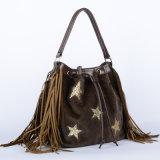 De Nieuwe Trendy Handtas van uitstekende kwaliteit van de Leeswijzer van de Handtassen van de Ontwerper (wt0011-2)