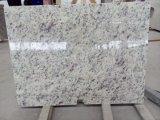 Rosa bianca Granite Stone Countertop per Kitchen, Bathroom