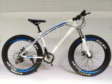 Meistgekaufter kühler Schnee-fettes Gummireifen-Fahrrad (ly-a-37)