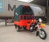 최고 모형에 의하여 자동화되는 유형 구급차 3 바퀴 기관자전차