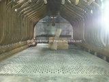 Il vapore impaccato ha prodotto un legno dei 0.5~6 t/h, la biomassa, caldaia a vapore infornata carbone