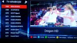 Beste Arabische IPTV van Europa/Box Support H. 265 Update Hevc/Ota/Canal+/Beinsport/Sporten Mbc/Bt