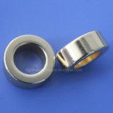 Magneet van de Ring van de Zeldzame aarde van het neodymium de Permanente
