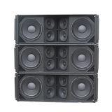 Ds212 Audio Pessive de Met drie richtingen van de Serie van de Lijn PRO