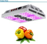 높은 PAR 140W LED Plant Grow Light, Hydroponics Grow Light