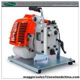 Mini bomba de agua de jardín de gasolina (wp10b)