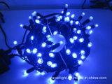 크리스마스 휴일 훈장이 10m 100LEDs LED 끈에 의하여 점화한다
