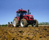 Foton Lovol großer 125 Bauernhof-Traktor HP-4WD mit CER u. ISO9001