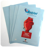 Großverkauf kundenspezifisches gedrucktes Belüftung-Bucheinband-Plastikbuchfaltblatt in Guangzhou