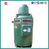 Dreiphasenpumpen-Motor China der induktions-25HP