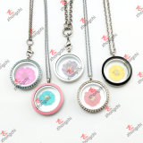 Lockets Gifts (NDF50822)のための方法Colorful Nature Dry Hibiscus Flowers