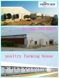 Steel prefabbricato Frame House in Livestock con Machinery in Un Stop