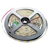 새로운! 좋은 가격 LED 지구 SMD5054 60LEDs/M DC12V