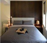 Moderner Entwurfs-Haus-Wohnzimmer-Ausgangsmöbel (HF-05)
