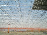 Large Span Roofing를 위한 가벼운 Steel Structure Space Frame