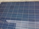 Alta qualità Poly 310W Solar Panel Black Frame (AE310P6-72)