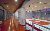 Pannello di soffitto acustico materiale insonorizzato della parete delle lane di legno