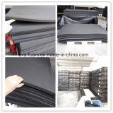 열 절연제 건축재료는, 방수 거품 장을 지붕을 단다