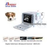 ультразвук блока развертки ультразвука вагонетки 3D 4D портативный ветеринарный