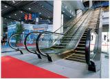 Rolltreppe gebildet im China QA-direkten Hersteller